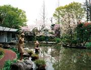 쇼와노이즈미 연못